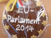 20140129_euparlament